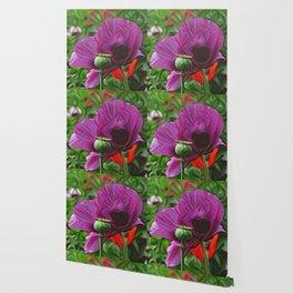 DeepDream Flowers, Poppy, DeepDream style Wallpaper