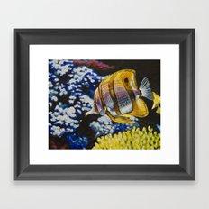 Copperband Butterflyfish Framed Art Print