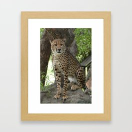 """""""Poetry in Motion"""" by ICA PAVON Framed Art Print"""
