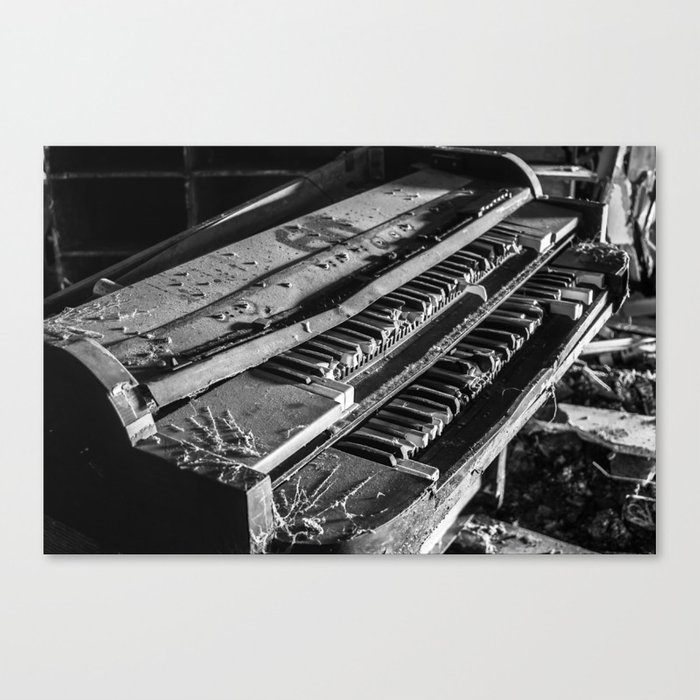 Organ Dust Canvas Print