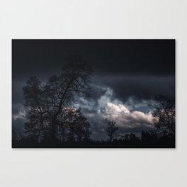 Invierno // CL Canvas Print