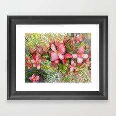 Begonia Beauty Framed Art Print