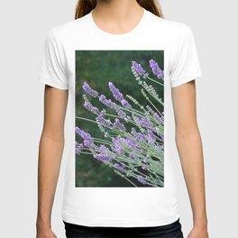 Lavender Divine T-shirt