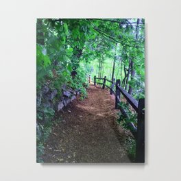 this is the path to wellesley Metal Print