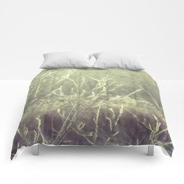 Obscure Comforters