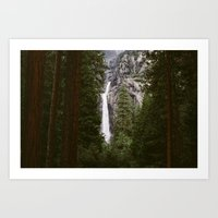 Are we out of the woods?  Art Print