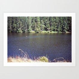 Cranberry Lake Art Print
