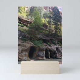Vibrant Trees   Rocky Terrain   Caves   Streams of Water   Hiking   Nature Mini Art Print
