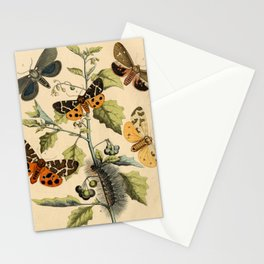 5 Moths Stationery Cards