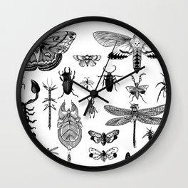 Bug Board Wall Clock