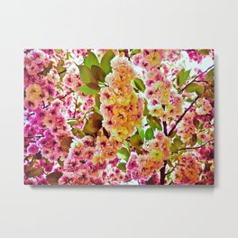 Polychrome Beauty In Full Bloom Metal Print