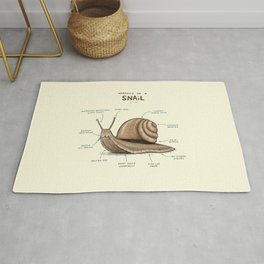 Anatomy of a Snail Rug