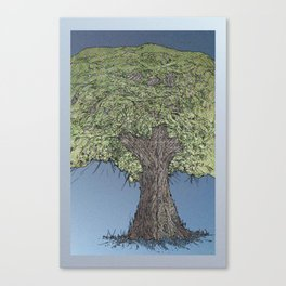 ALDER Canvas Print
