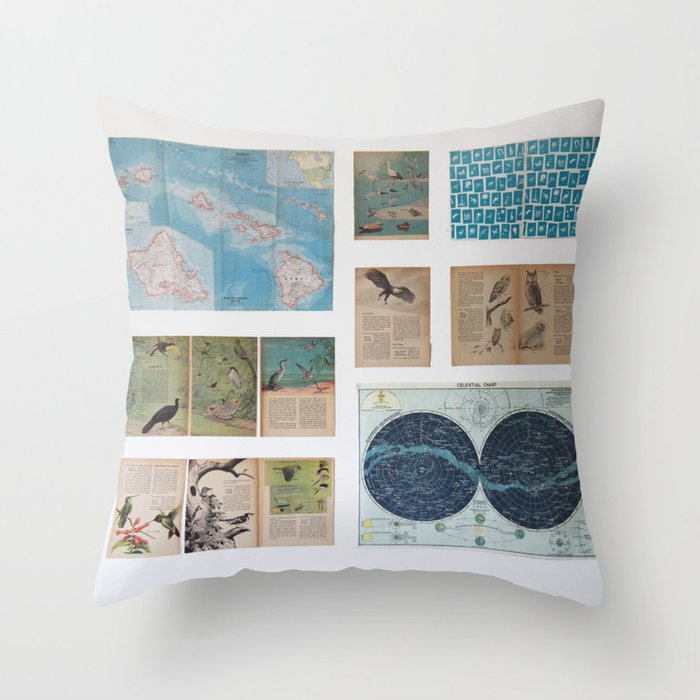 of birds and travels Throw Pillow
