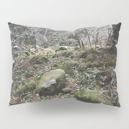 Winter stones Pillow Sham