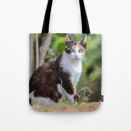Are you meowing to me? Tote Bag