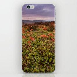 Natural iPhone Skin