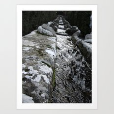 Villa Lante Water Chain Art Print