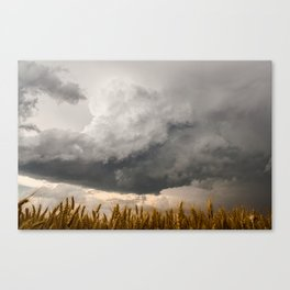 Marshmallow - Storm Cloud Over Golden Wheat in Kansas Canvas Print