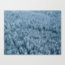 Winter pine forest aerial - Landscape Photography Canvas Print