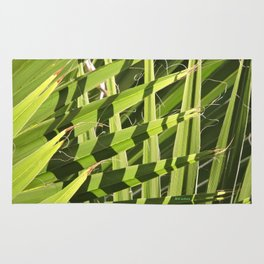 TEXTURES -- Palm Fronds Intersecting Rug