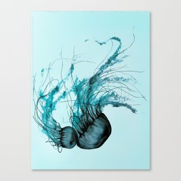 Emerald Waltz, Pacific Sea Nettle Canvas Print