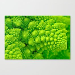 Broccosaurus Canvas Print