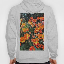 Red Tulips of Istanbul Hoody
