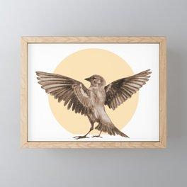 fighting sparrow Framed Mini Art Print