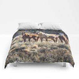 The Vanguard Comforters