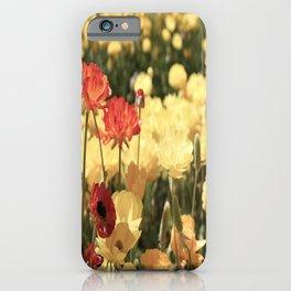 California Flowers  iPhone Case