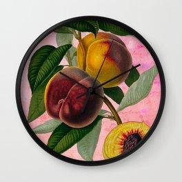 Vintage Botanical Collage, Bradford Peach Wall Clock