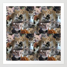 Cats of the neighborhood pattern Art Print