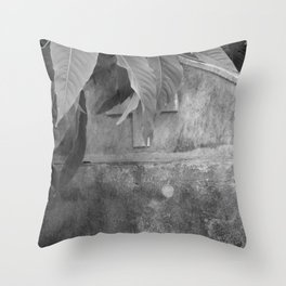 grave under leafs Throw Pillow