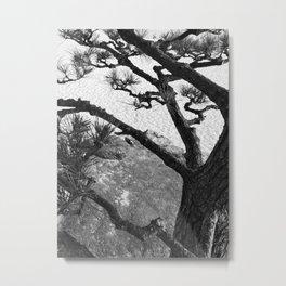 fractal Metal Print