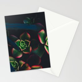 The Succulent Garden 1 Stationery Cards