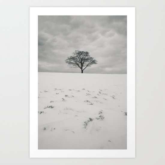 White Winterscape Art Print