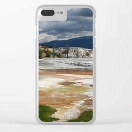 Grassy Spring View Clear iPhone Case