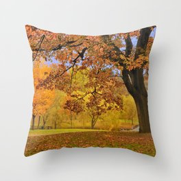 Fall at Larz Anderson Throw Pillow