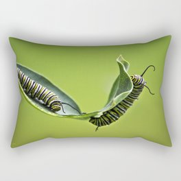 Monarch Caterpillars Rectangular Pillow