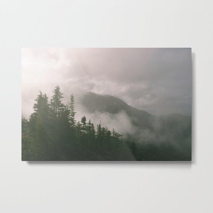 Foggy Forest (Squamish, British Columbia, Canada) Metal Print