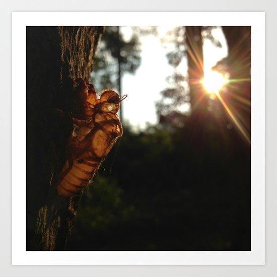 Cicada Soul Art Print