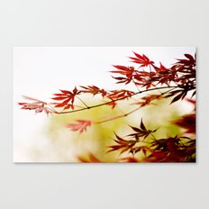 red.green.white. Canvas Print