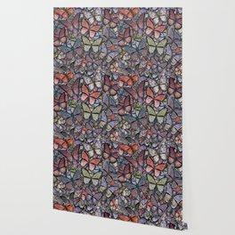 butterflies galore grunge version Wallpaper
