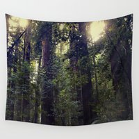giants Wall Tapestries featuring Sunrays in the Redwoods by Amy J Smith Photography