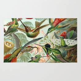 Vintage Hummingbirds Decorative Illustration Rug