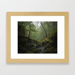 cataract creek after rain Framed Art Print