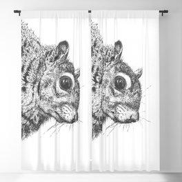 Squirrel! Blackout Curtain