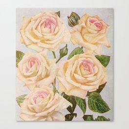 Vintage White Rose Painting (1920) Canvas Print