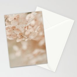Softly Fading Stationery Cards